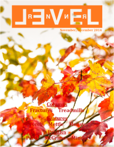 Nov/Dec Level Renner